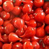 Sementes De Pimenta Iracema Biquinho Vermelha - Linha Multi