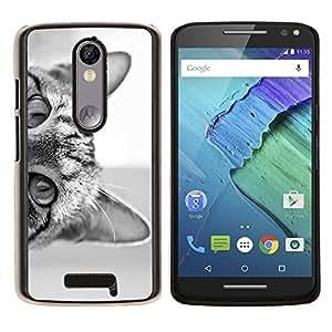 Stuss Case / Funda Carcasa protectora - Noir chaton blanc mignon Pet - Motorola Moto X3 3rd Generation