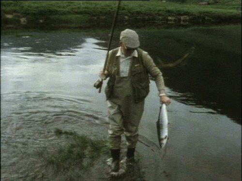 Irish Summer Salmon