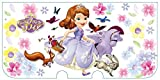 Nintendo and Disney Official Kawaii new3DS XL Hard Cover -Sofia the First Flower-