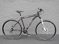 28 Zoll Alu MTB Cross Fahrrad Bike SHIMANO 24 Gang DISC SCHEIBENBREMSEN Dekor