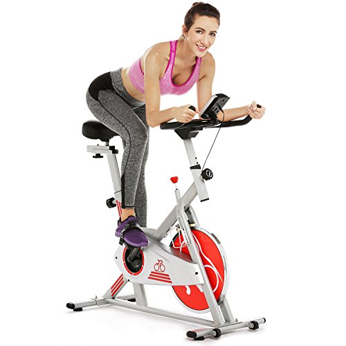 Ferty Fitness Exercise Bike, Belt Drive Indoor Cycling Bike with Digital Monitor, Phone Bracket and Water Bottle Holder (US Stock)
