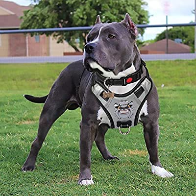 Babyltrl Silver Big Dog Harness No-Pull Anti-Tear Adjustable Pet Harness Reflective Oxford Material Soft Vest for Large Dogs Easy Control Harness (X-Large, Silver)