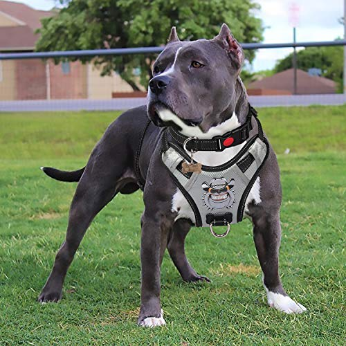 xl dog harness - 3