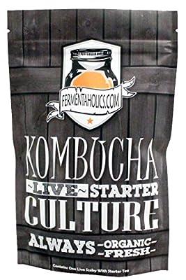 Kombucha SCOBY- Live Starter Culture