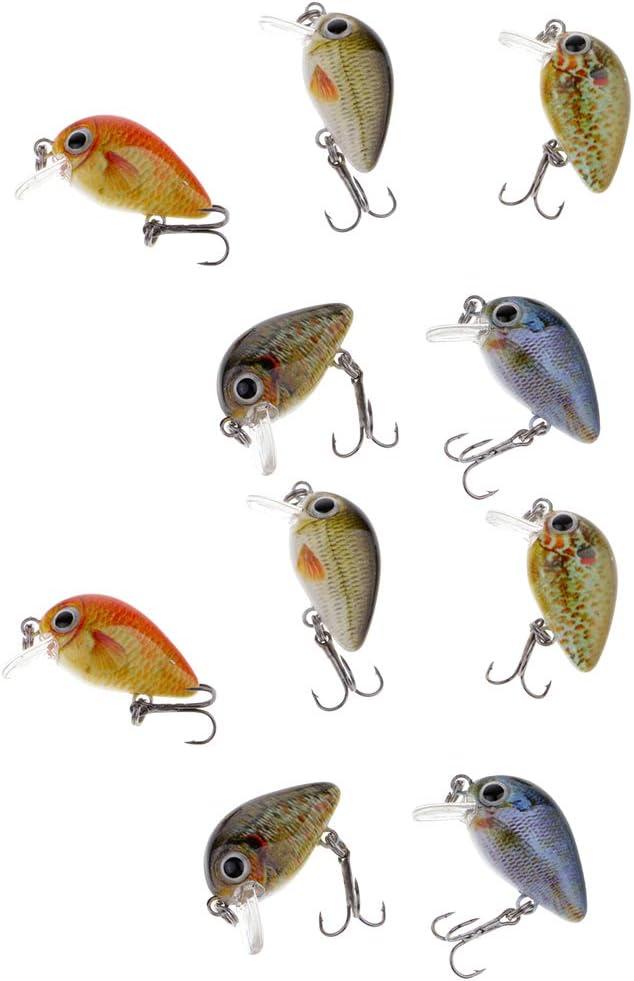 IPOTCH 10x Mini Señuelo Pesca Cebo 2.7cm Minnow Cebos W/Caja Cebos para Carpas Pesca de Mar: Amazon.es: Deportes y aire libre