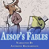 Bargain Audio Book - Aesop s Fables