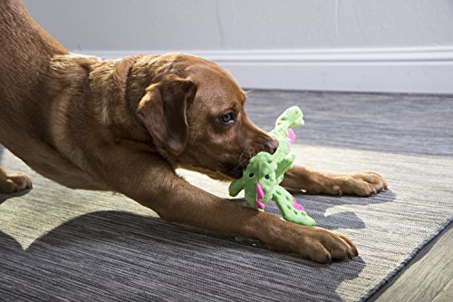 GoDog Skinny Dragons Green Large Toy with Chew Guard