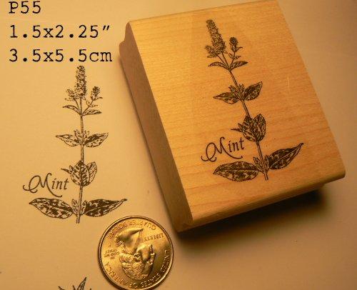 Mint rubber stamp WM P55 (Basil Stamp)