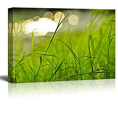 Beautiful Scenery Landscape Fresh Green Grass in a Park Beside a River - Canvas Art Wall Art - 16