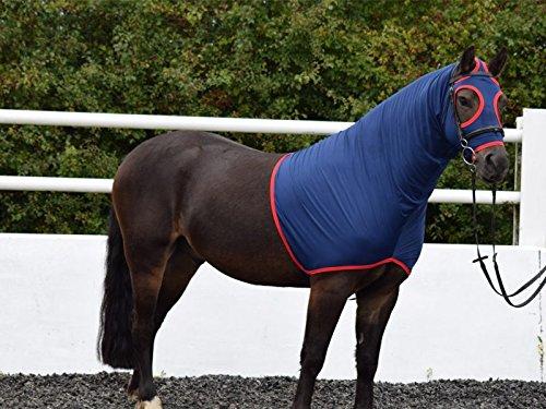 Nylon Lycra Lycra Lycra Show cappuccio – perfetto per mostrare, dressage, Eventing cavalli e pony – navy con finiture in rosso c3f197