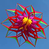 AMLJM Large Rainbow Colorful Lotus Flower Kite Single Line Outdoor Sports Toy Flying Box Kite for Kids Sport with Flying Tool