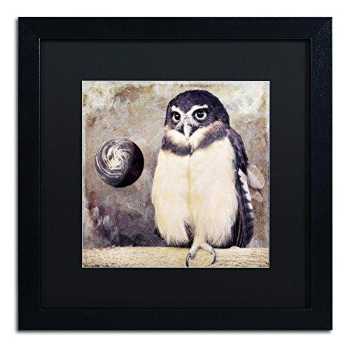 Moon Owl by Color Bakery, Black Matte, Black Frame 16x16-Inch