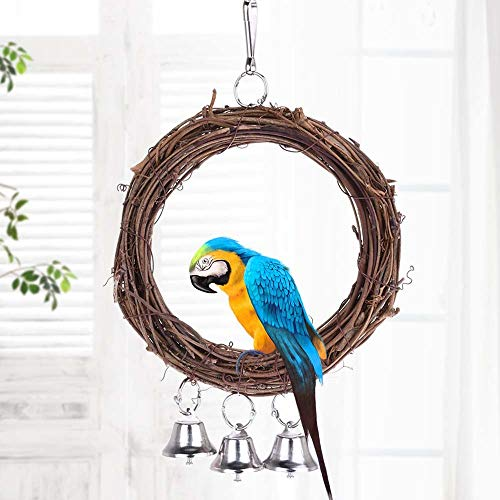Bird Toys - Parrot Toy Round Rattan Swing With Bells Bird Stand Play Rack Wood Ring 16cm Diameter - That Small Pinata Look Sneakers Talking Quaker Pack Beads Parakeets Basket Sale Play Co