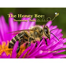 Honey Bees:  Fascinating Facts (Insects--Fascinating Facts Book 2)