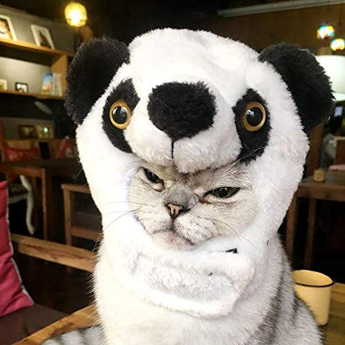 KOBWA Cat Halloween Costume Velvet Panda Hat, Cute Animal Shape Cosplay Pet Hat Hallowen Christmas Party Funny Dress Out, Winter Warm Hat for Small Dogs and -