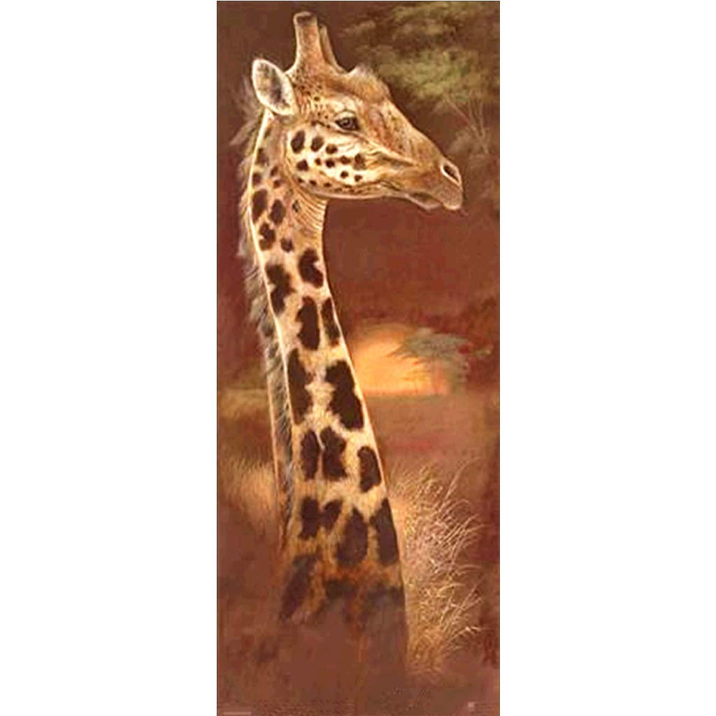 Jiamins 5D Diamond Painting Complet Animaux (25x55cm), 5D Broderie Diamant Kit Complet (Cheval)