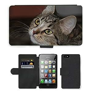 PU LEATHER case coque housse smartphone Flip bag Cover protection // M00110833 Ojos de gato Ojos Animales Gato lindo // Apple iPhone 4 4S 4G