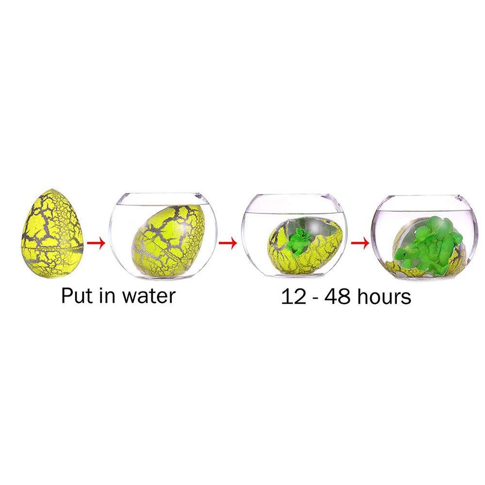 #3 DIYARTS 60 UNIDS Hatching Dinosaur Eggs Dinosaurio de la Novedad Crecen los Juguetes Crecen Mascotas en el Agua para ni/ños Ni/ños Fiesta Favores Suministros Regalos de cumplea/ños