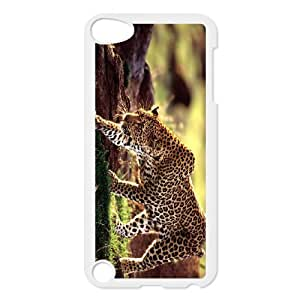 Ipod Touch 5 The plum flower leopard Phone Back Case Use Your Own Photo Art Print Design Hard Shell Protection LK036958