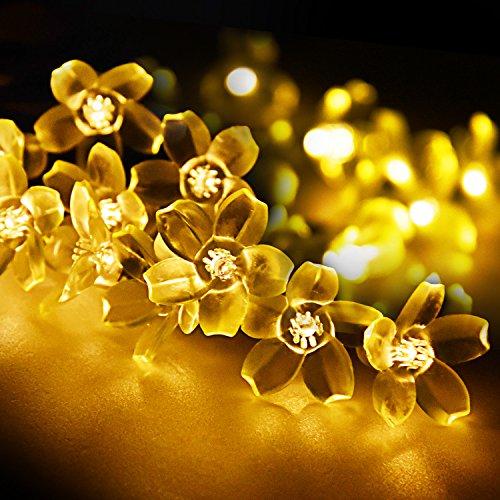 String Lights, LightsEtc 15.7ft 20 LED Solar Warm White Blossom Lighting Waterproof Flower Fairy Lights for Christmas Holiday Party Outdoor Houses Garden