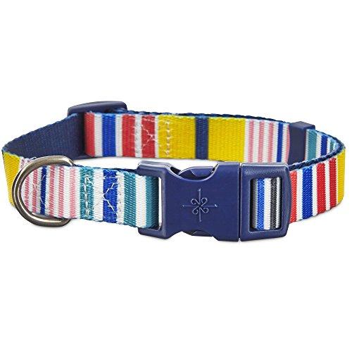 - Good2Go Multi-Color Stripes Dog Collar, Large