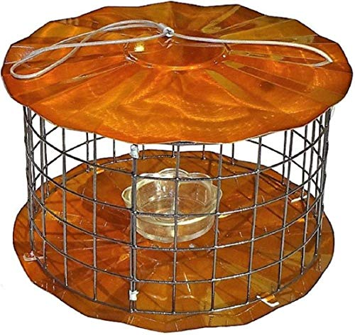 Erva BBF1C Meal Worm Barrier Guard Feeder, Copper