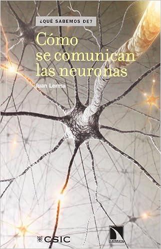 Como Se Comunican Las Neuronas (¿Qué sabemos de?): Amazon.es ...