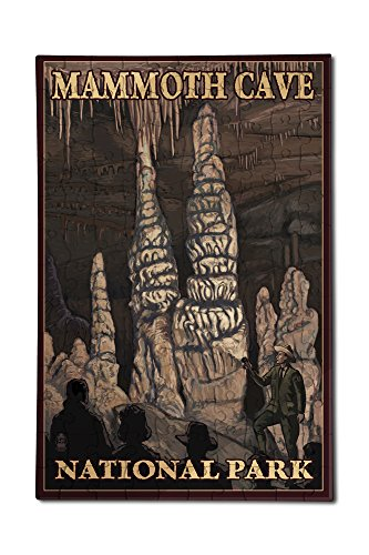 Pillars Framed Poster (Mammoth Cave National Park, Kentucky - Onyx Pillars (12x18 Premium Acrylic Puzzle, 130 Pieces))