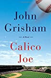 Book cover from Calico Joe by John Grisham