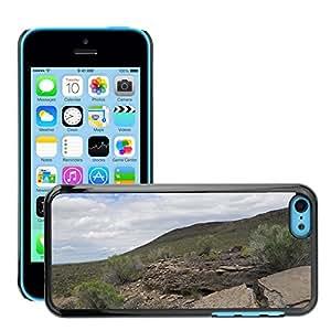 Hot Style Cell Phone PC Hard Case Cover // M00309664 Ancient Shoreline Limestone Desert // Apple iPhone 5C