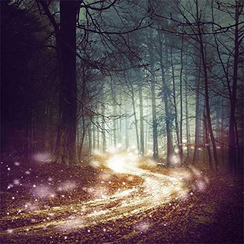Leowefowa 8x8ft Fantasy Forest Backdrop Magical Forest Path Firefly Lights Dreamy Foggy Forest Winding Road Background Fairytale Woodland Halloween Party Decorations Movie Film Video Drape Wallpaper -
