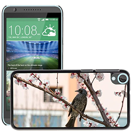 Just Phone Cases Slim Protector Hard Shell Cover Case // M00128431 Bird Cherry Blossoms Cherry Tree // HTC Desire 820 ()