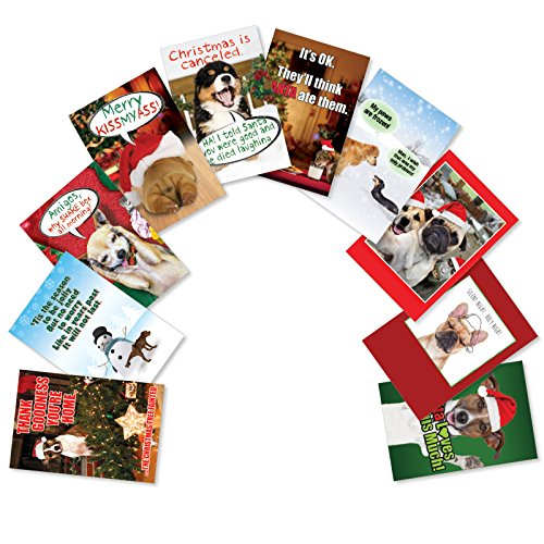 A5556XSG-B1x10 'PetiGtreet: Frozen Paws': Assorted Box of 10 Christmas Cards Featuring Man's Best Friend with Humorous Christmas Greetings, with Envelopes (10 Designs, 1 Card Per Design)