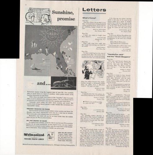 - Wolmanized Pressure Treated Lumber Sunshine Promise 1960 Antique Advertisement