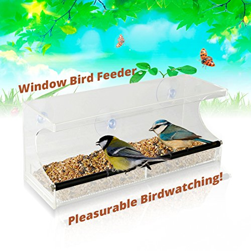 Tray Time Hostess (Window Bird Feeder - See-Through Acrylic - Clear, Removable Slide Out Tray - Drainage Holes Keep Bird Seed Fresh - 3 Suction Cups For Easy Mounting - Perfect for Adults, Kids, Pets, Home Bird Watching)