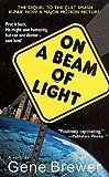 On a Beam of Light: A Novel