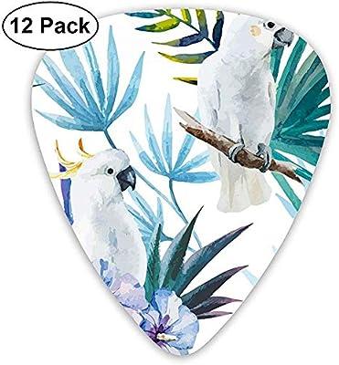 Acuarela White Parrot Birds Classic Guitar Picks 12 Pack para guitarra eléctrica, guitarra acústica, mandolina y bajo: Amazon.es: Instrumentos musicales