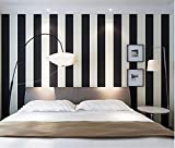 Stuffwholesale Black&White Stripe Wallpaper Roll Mural Wall Paper 20.5 Inches Wide (Black&Not Pure White Stripe)