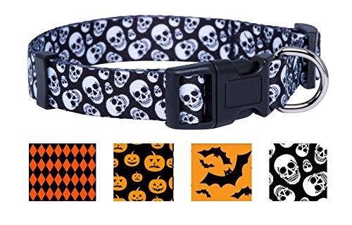Dogs Halloween (Halloween Dog Collar (Medium, Skulls))