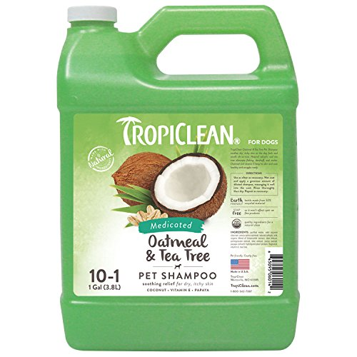 TropiClean Oatmeal & Tea Tree Medicated Dog Shampoo, 1 Gallo