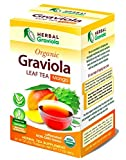 Graviola Leaf Tea – Mango Green Tea Flavor – USDA Organic, non-gmo 24 bags per box – by Herbal Graviola
