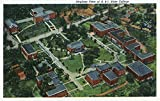 Nashville, TN - Aerial View of Tennessee State College Campus (when it was A&I State) (12x18 Art Print, Wall Decor Travel Poster)