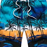 GREFER Mens Printed Swim Trunks Quick Dry Beachwear Sports Running Swim Board Shorts Blue
