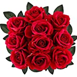 """Supla 10 Stems Open Silk Roses Velvet Roses Wedding Roses in Red 20"""" Tall X 4"""" Bloom for Floral Arrangement Home Accent"""