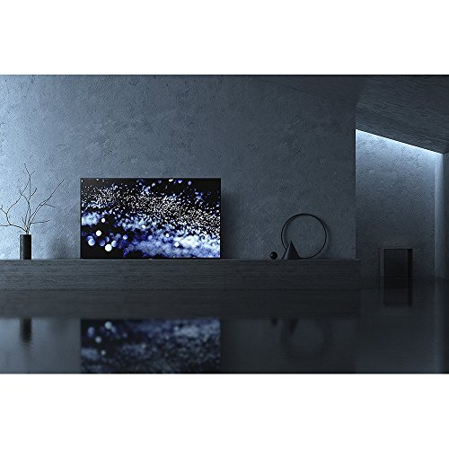 Sony-XBR65A1E-65-4K-Ultra-HD-Smart-Bravia-OLED-TV-2017-1-Free-Month-of-Netflix