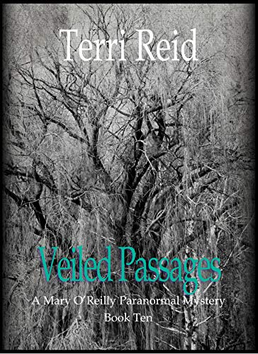 Veiled Passages Mary OReilly Book ebook
