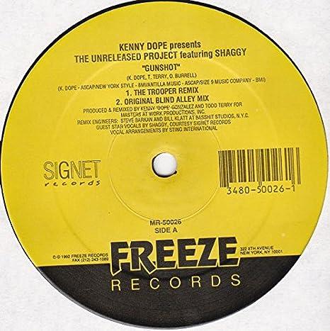 cd shaggy productions