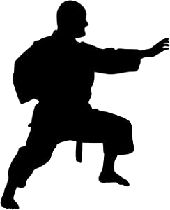 Martial Arts Wall Decal Sticker 36 - Decal Stickers and Mural for Kids Boys Girls Room and Bedroom. Karate Sport Wall Art for Home Decor and Decoration - Martial Art Kung Fu Taekwondo Silhouette Mural
