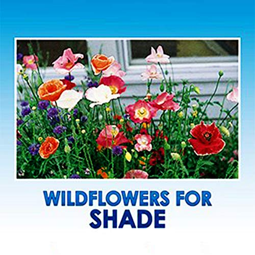 Partial Shade Wildflower Seeds Bulk - 8 Bonus Gardening eBooks + Open-Pollinated Wildflower Seed Mix Packet, Non-GMO, No Fillers, Annual, Perennial Wildflower Seeds Year Round Planting - 1 oz